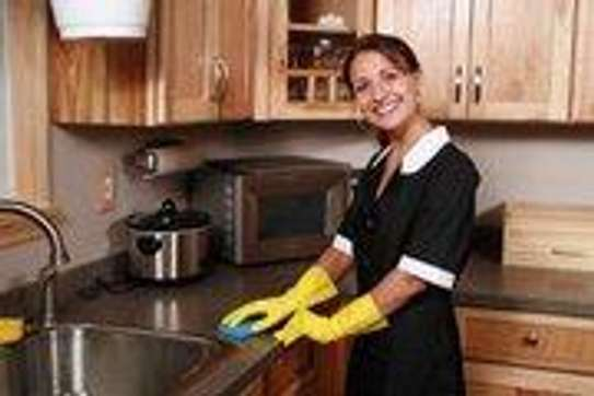 Bestcare Domestic and House Cleaning Services image 4