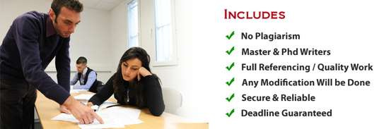 Professional Writing Services image 6
