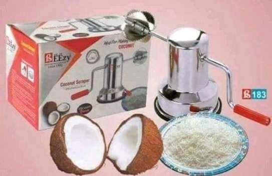 Coconut scrubber image 1