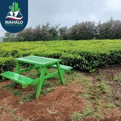 0.5 ac land for sale in Limuru Area image 9