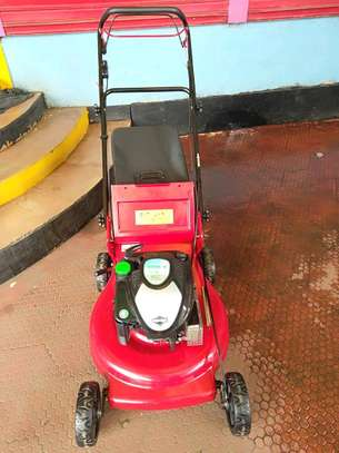 Commercial briggs and Stratton lawn mower