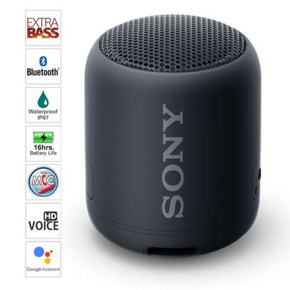Sony SRS-XB12 Mini Bluetooth Speaker Loud Extra Bass Portable Wireless Speaker with Bluetooth -Loud Audio for Phone Calls- Small Waterproof and Dustproof Travel Music Speakers Black image 2