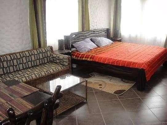 2 bedroom  fully furnished cottages for rent image 1