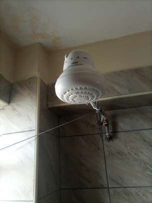 shower heads for salty /fresh /borehole water image 2