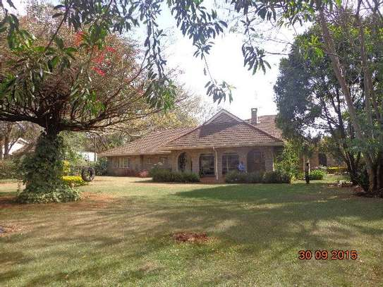 Lavington - Bungalow, House image 16