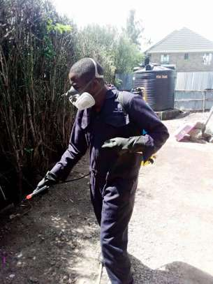 Urbancare Pest Control & cleaning services. image 1