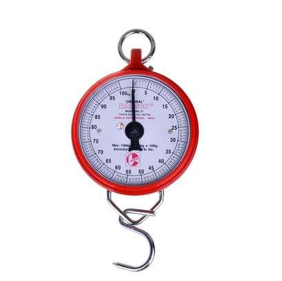 Hanson Hanging Scale Dial Spring Balance (100kg or 200kg) - Choose Size image 1