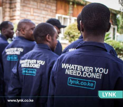 Lynk image 3