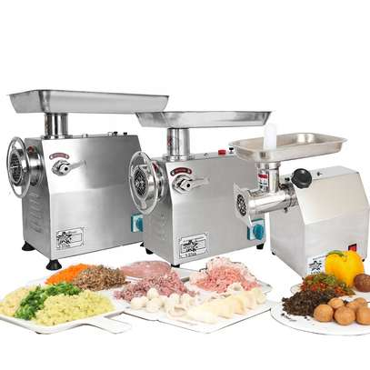 22# electric stainless steel meat grinder /TK22 meat grinder image 1