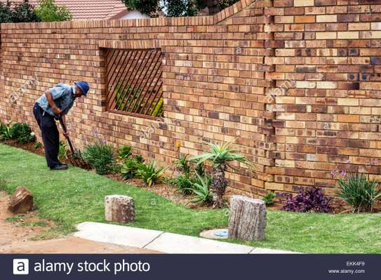 Landscaping Services in Nairobi.Low Cost Garden Maintenance
