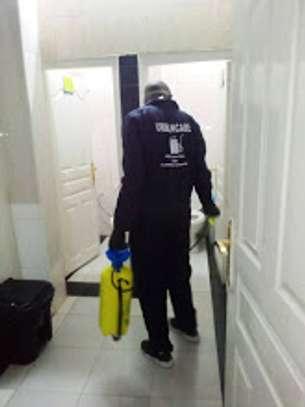 pest control services. image 1