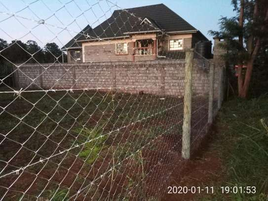 Treated poles and Fencing services image 5
