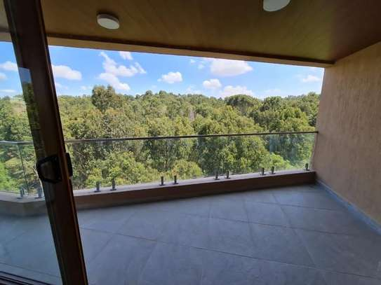 3 bedroom apartment for rent in Spring Valley image 17