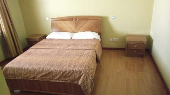 2 bedroom apartment for rent in Milimani image 15