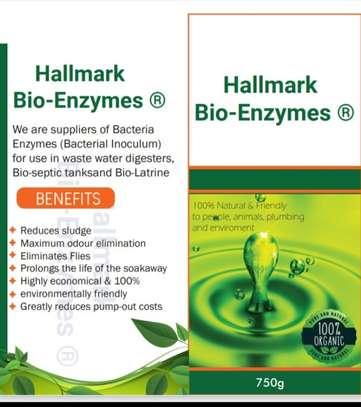 BIODIGESTER CHEMICALS/BACTERIA ENZYMES IN KENYA image 1