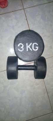 3kgs gym dumbbells image 1