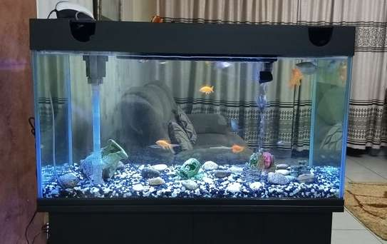 Aquarium JAD EA-100 with Fish and Accessories