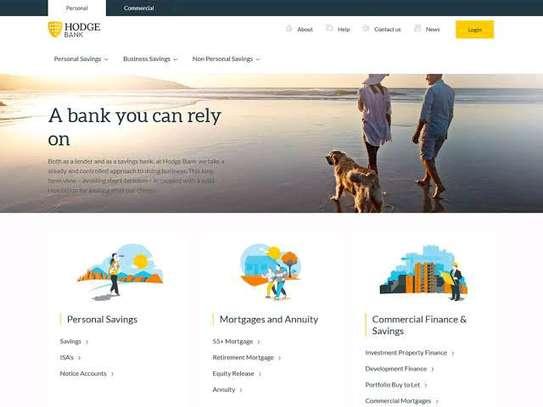 Professional Wordpress Website Development