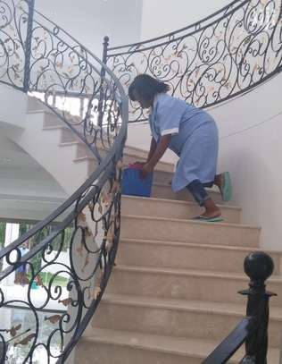 Looking for Domestic Workers image 3