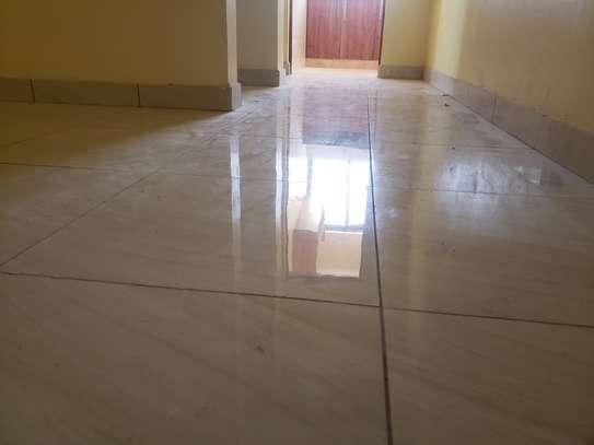 1 bedroom apartment for rent in Ziwa La Ngombe image 3