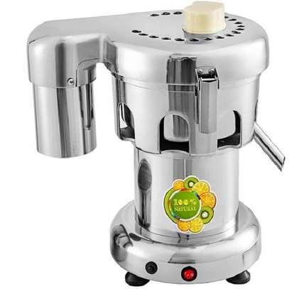 Heavy Duty Commercial Fruit Juicer Fruit Extractor 100KG Per Hour image 1