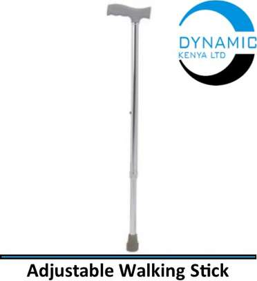 Adjustable Walking Stick image 1