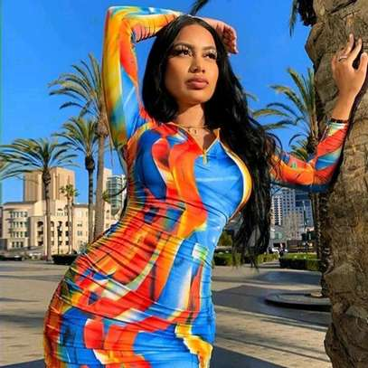 Multi Colored Dress image 1