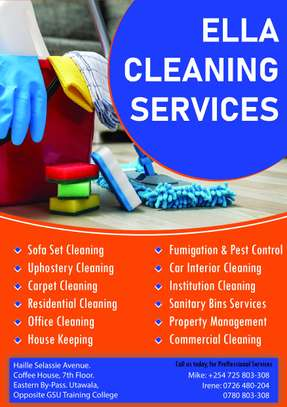 ELLA BEDBUGS ,COCKROACHES & MOSQUITOES CONTROL & FUMIGATION SERVICES IN MLOLONGO. image 7