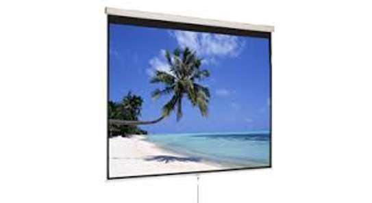 Electric projection screen 120'x120'