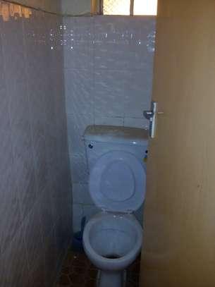 1 bedroom apartment for rent in Embu West image 12