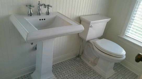 Need a reliable plumber to repair a leak or install new pipes? image 2