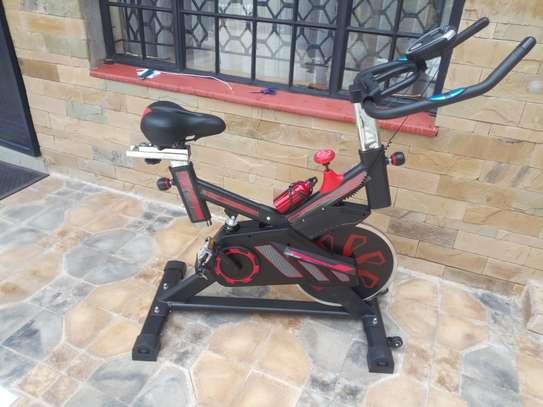 S100 Spinning bike image 1