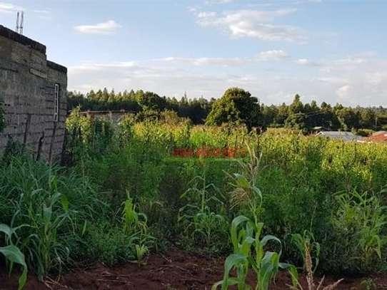 Gikambura - Land image 4