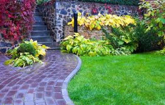 Garden Maintenance Services | Hire Best Gardeners When You Need Them | Contact us today! image 4