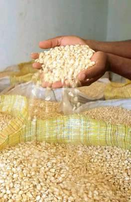 SELLING CLEAN GOOD QUALITY MAIZE IN BULK