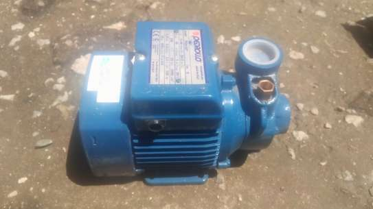Water pump.  PKM 60(Davis and shirtliff product)