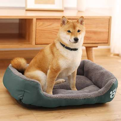 High Quality Dog Beds For Sale