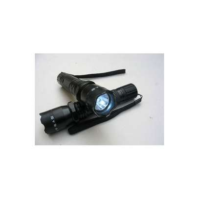 Torch image 2