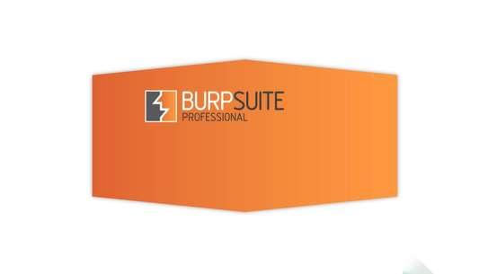 Burp Suite Professional 2020 image 2