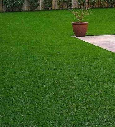 grass carpet influence on beauty and texture image 14