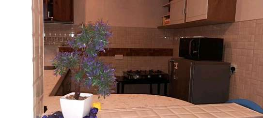 Fully furnished AirBnB apartment in Nanyuki image 6