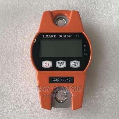 300kg/600lb Mini Industrial Crane Digital Hangi image 1