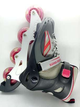 Skates image 1