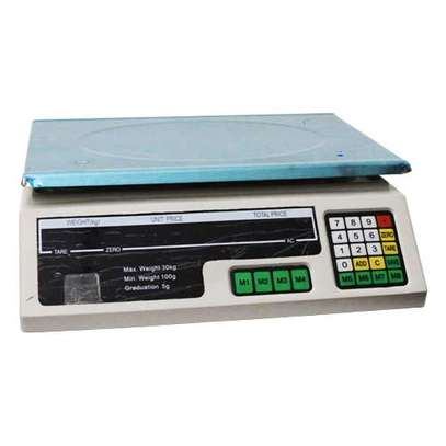 Electronic Digital Weight Scale ACS 30 30 kilograms capacity image 1