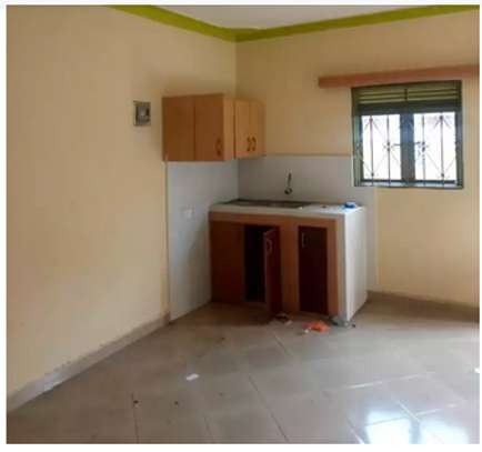 Spacious Bedsitter with Own Entrance In Hurlingham