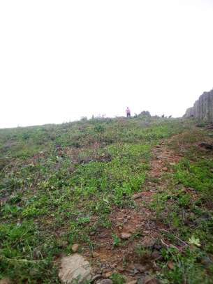 0.25 ac land for sale in Riat Hills image 5