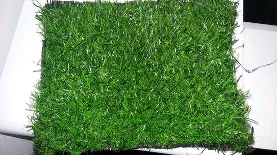Grass carpets image 1