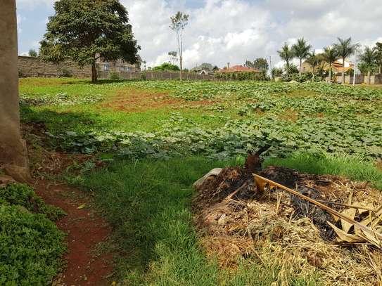 Fresh plot of lands on offer‼️ image 2