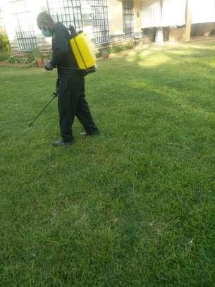Garden Maintenance Services image 10