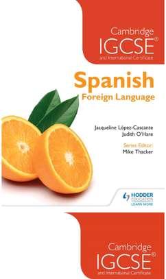 Spanish lessons image 1